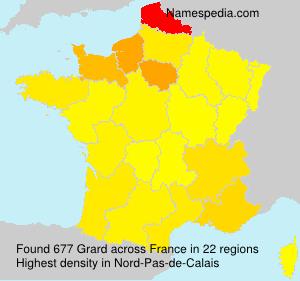 Surname Grard in France
