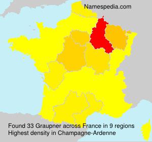 Familiennamen Graupner - France