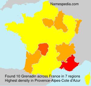Surname Grenadin in France