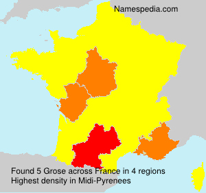 Surname Grose in France