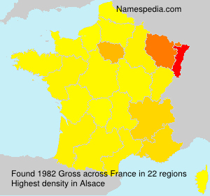 Surname Gross in France