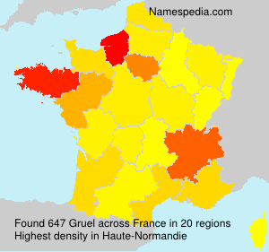 Surname Gruel in France
