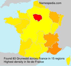 Surname Grunwald in France