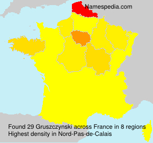 Familiennamen Gruszczynski - France
