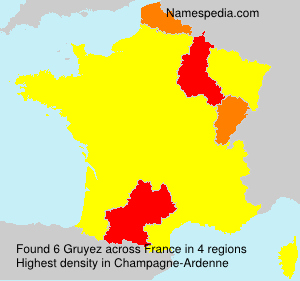 Surname Gruyez in France