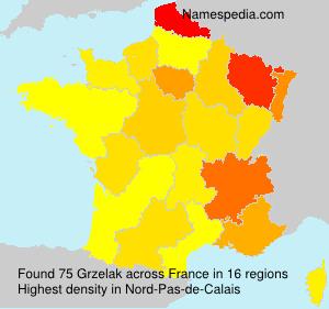 Surname Grzelak in France
