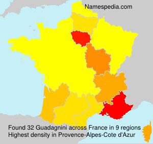Surname Guadagnini in France
