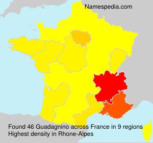 Surname Guadagnino in France