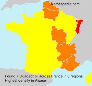 Surname Guadagnoli in France