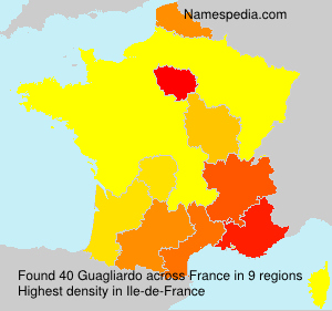 Surname Guagliardo in France