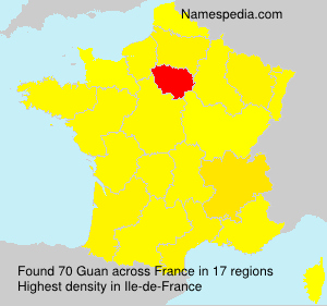 Surname Guan in France