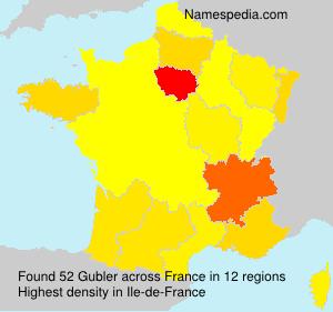 Surname Gubler in France
