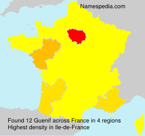 Surname Guenif in France