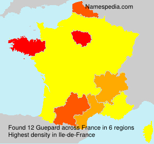 Surname Guepard in France