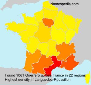 Surname Guerrero in France