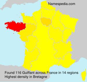 Surname Guiffant in France