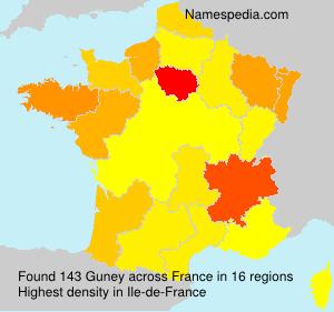 Surname Guney in France