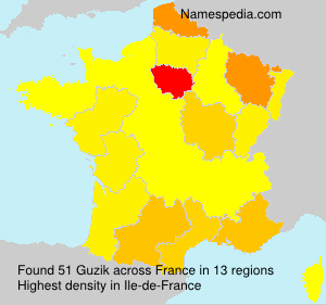 Surname Guzik in France