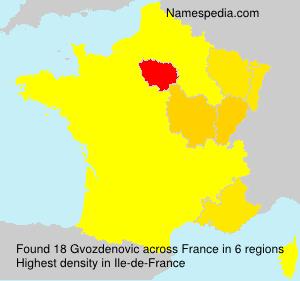 Surname Gvozdenovic in France
