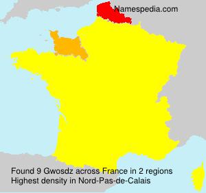 Surname Gwosdz in France