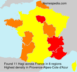 Surname Hagi in France