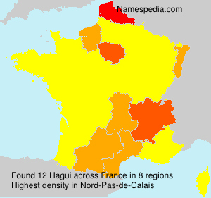 Surname Hagui in France