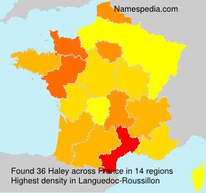Familiennamen Haley - France
