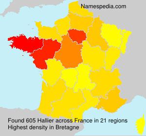 Surname Hallier in France