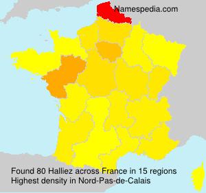 Surname Halliez in France