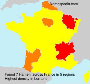 Surname Hameni in France