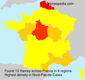 Surname Hamey in France