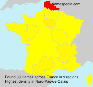 Surname Hamez in France