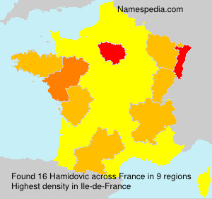 Surname Hamidovic in France