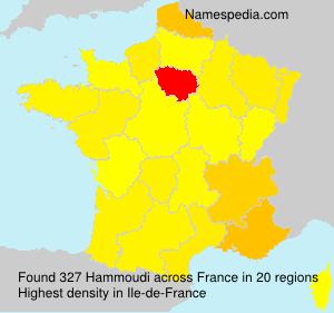 Surname Hammoudi in France