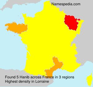 Surname Hanib in France