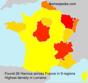 Surname Hannus in France