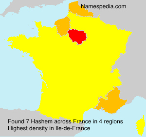 Surname Hashem in France