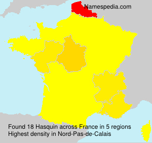 Surname Hasquin in France