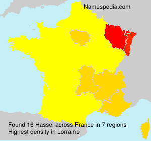 Surname Hassel in France