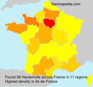 Surname Hautemulle in France