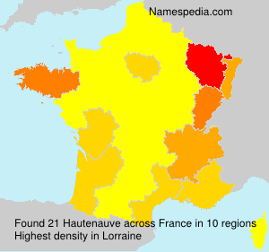 Surname Hautenauve in France