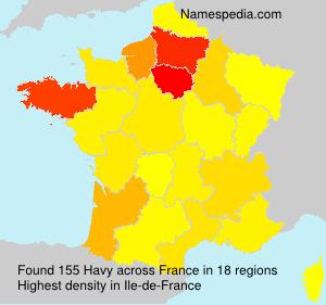 Familiennamen Havy - France