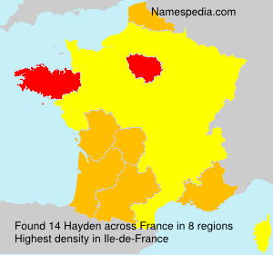 Surname Hayden in France
