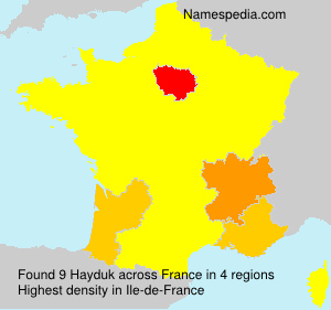 Surname Hayduk in France