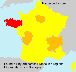 Surname Hayford in France