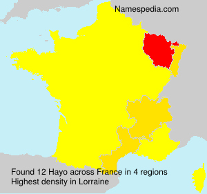 Surname Hayo in France