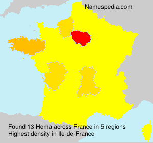 Surname Hema in France