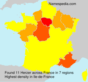 Surname Herzer in France
