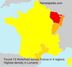 Surname Hinterholz in France
