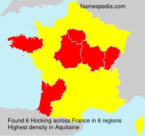 Surname Hocking in France